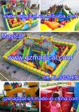 Inflatable Amusement Park Fun City (MIC-638)