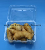 Disposable Plastic Packaging Box Fruit and Vegetable Packaging Container FDA Offer