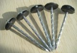 Galvanized Mushroom Roofing Nail with Plastic Washer