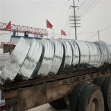 Galvanized Steel Strip for Transformers