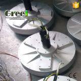Low Torque Coreless Disc Permanent Magnet Generator for Wind Turbine