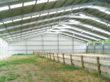Steel Structure Horse Arena (SS-616)