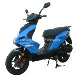 Fashion Popular 50cc EEC Scooter (SP50QT-14)