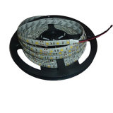 30LEDs/M LED Strip Light 5050 SMD RGB/ Multicolor DC12V IP33