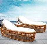 Home Garden Outdoor Furniture Swimming Pool Rattan Beach Sun Bed PE Wicker Sun Lounge Chair T496