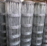 Supply Grassland Fence with Lower Price and Best Quality