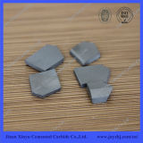 100% Virgin Materail Tungsten Carbide Coal-Mining Tips