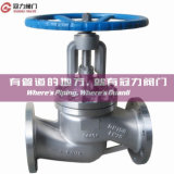 OEM Globe Valve with Ce API ISO Certifications