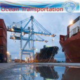 "Ocean Shipping Logistic Service Full Container to Singapore (20"" 40"")"