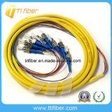 12 Color St/Upc Singlemode 12 Cores Fiber Optic Pigtail