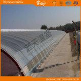 Film Solar Green House for Vegetable Planting