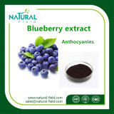 100% Natural Plant Extract Blueberry Extract 25% Anthocyanidins Powder by HPLC