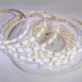 Flexible LED Strip Light SMD2835 60LEDs Outdoor LED Tape Light
