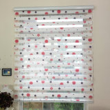 Adorable Printing Chain Roller Blind, Double Sheer Fabric Roller Shades