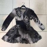 Lace Chiffon Long Sleeve Print Dress