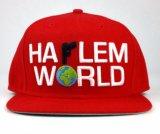 High Quality Wholesale 3D Embroidery Custom Snapback Cap