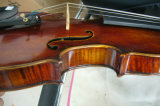 Low Price Handmade Antique Violin