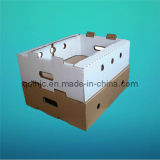 Corrugated Box/Packaging Box/Corrugated Packaging Box