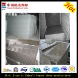Polished Granite Tiles for Floor and Wall (G603, G654, G664, G687, G682)