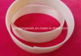 Wr PTFE Piston and Rod Support Guide Ring