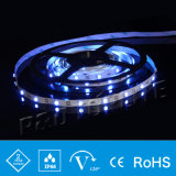 CE Approved PE Cannula SMD IP67 Waterproof LED Strip