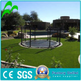 Chinese Suppiler of UV-Resistance Natural Looking Garden Royal Synthetic Turf