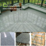 Hot Selling Floor Tiles Grey Color G603 Lunar Pearl Grey Granite for Interior Flooring