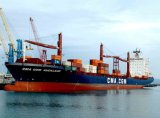 Shipping From China to Wellington Brisbane Truck Service in Pod