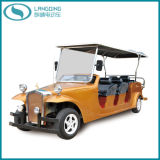 CE Approved Classic Design Electric Car 8 Seats (LQL080)