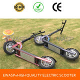 Ewasp 300W 36V Folding Electric Scooter for Adult