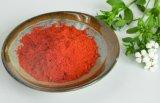 Paprika Powder--Asta 180--Pure Powder High Quality