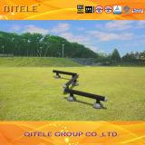 Outdoor&Indoor Gym Fitness Playground Equipment (QTL-3105)