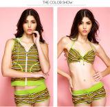 Four Pieces Anti-UV Stock Hot Sale Sexy Girl Hood Stripe Bikini