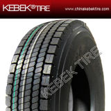 China New Truck Tire with DOT Certificate