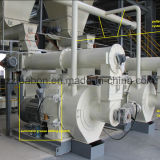 Solid Fuel Wood Pellet Mill for Heater (6000tons/year)