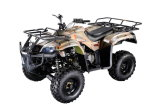 Hammer Style 250cc CVT Water Cooled ATV (MDL GA009-3)