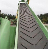 Chevron Conveyor Belt (C15P600, C15P740, C17L300)