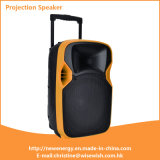 ODM 12 Inches Plastic Loudspeaker with LED Projector and Screen