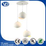 Decorative Hanging Pendant Light/Pendant Light Fixture