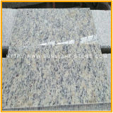 Popular Cheap Santa Cecilia Light Granite Tile for Wall/Floor