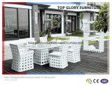Patio Leisure Garden Outdoor Modern Rattan Dining Table Chair Furniture (TG-1272)