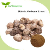 ISO SGS Certified 100% Natural Lentinus Edodes Plant Extract/Shiitake Mushroom Plant Extract