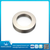 Permanent Rare Earth Ring Round Neodymium NdFeB Magnet for Motors