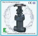 Forged Bellow Sealed Globe Valve (BGL41)