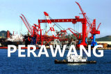 Sea Freight Service From Qingdao to Perawang Express