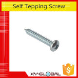Custom Metal Screws with Zinc Plated Gold Plated