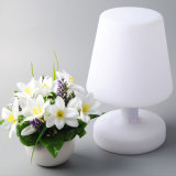 Recyclable PE Table Lamp Side Lamps with RGB LED