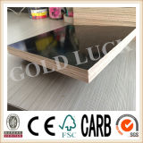 Smooth Surface Balck Film Face Plywood