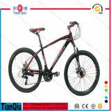 26 Inch 21 Speed Mountain Bike Bicycle MTB Mountain Cycle on Sale