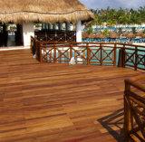 GOMA Outdoor wood Flooring